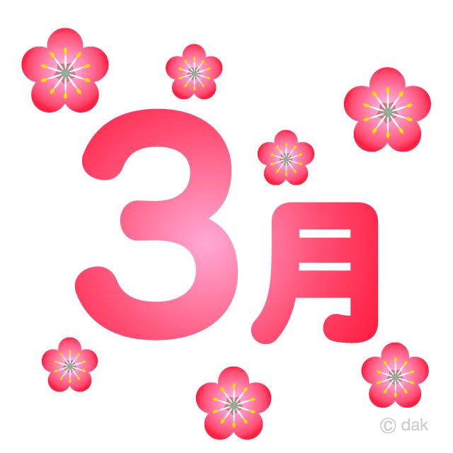 【いこいの薬局 旗の台店】2021年3月【零売】